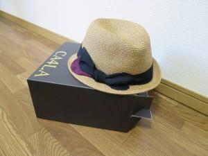 麦わら帽子 (17)